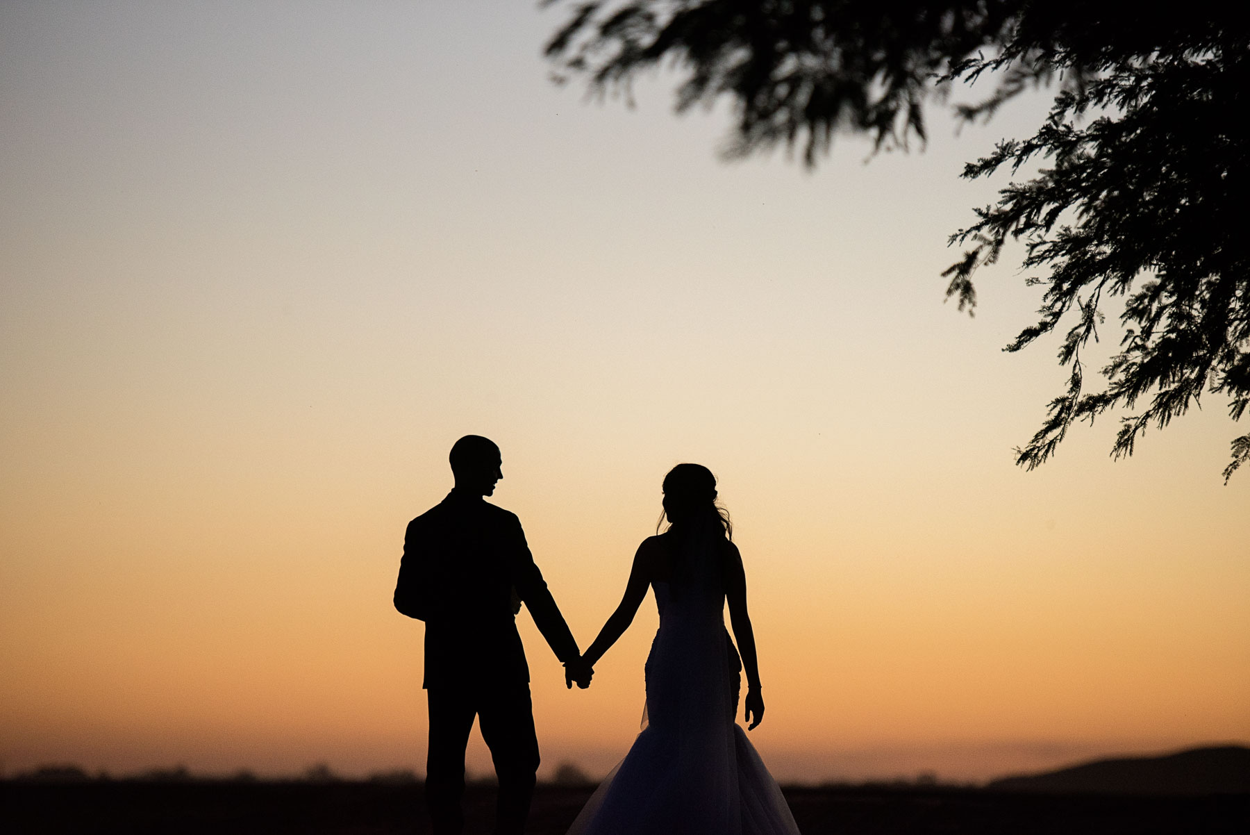 Wedding Photographers, Farm wedding photography, Sunset wedding photos