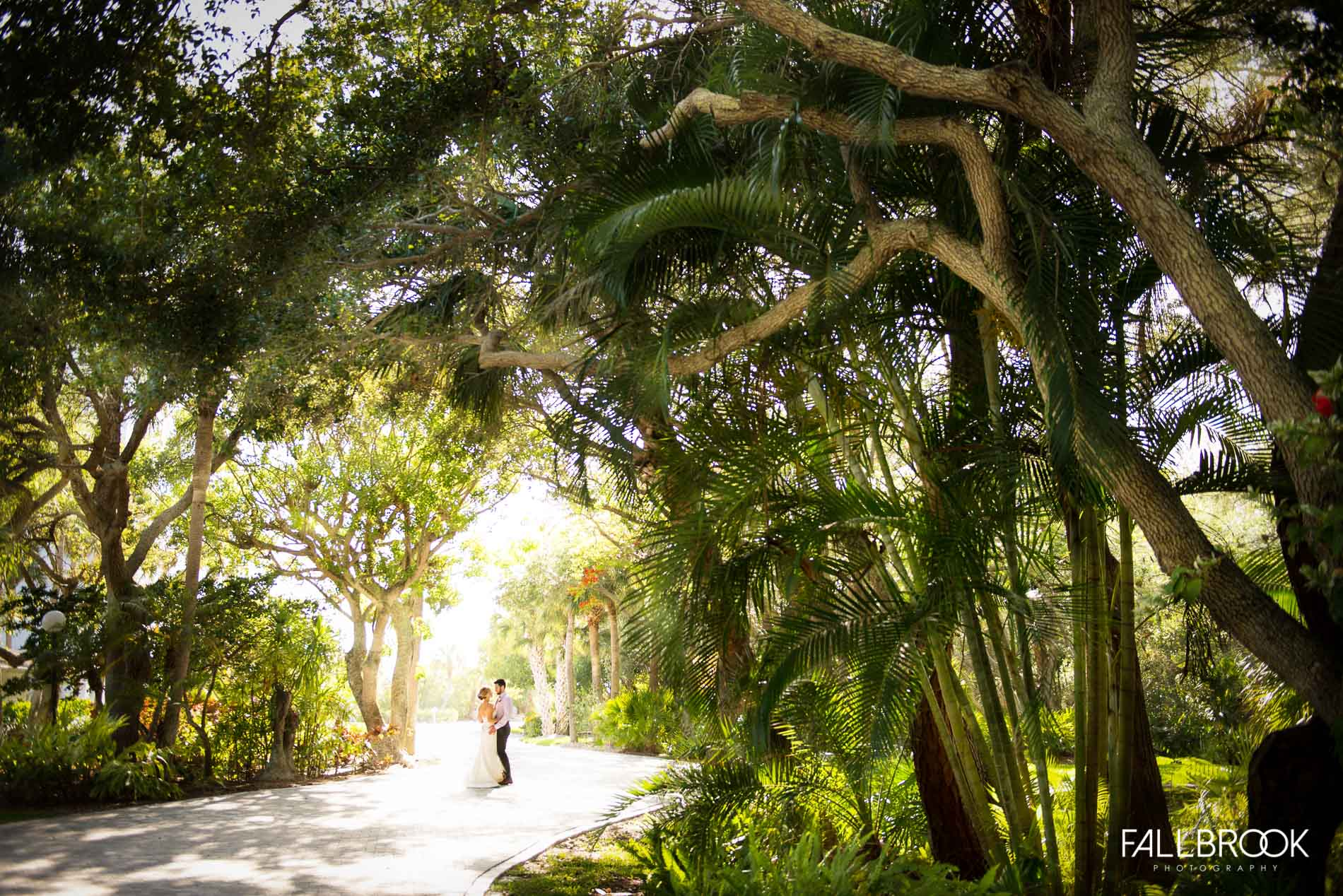 Ophelia S Sarasota: Tampa And Sarasota Wedding Photographers
